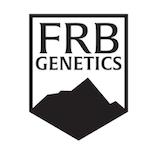 FRB Genetics